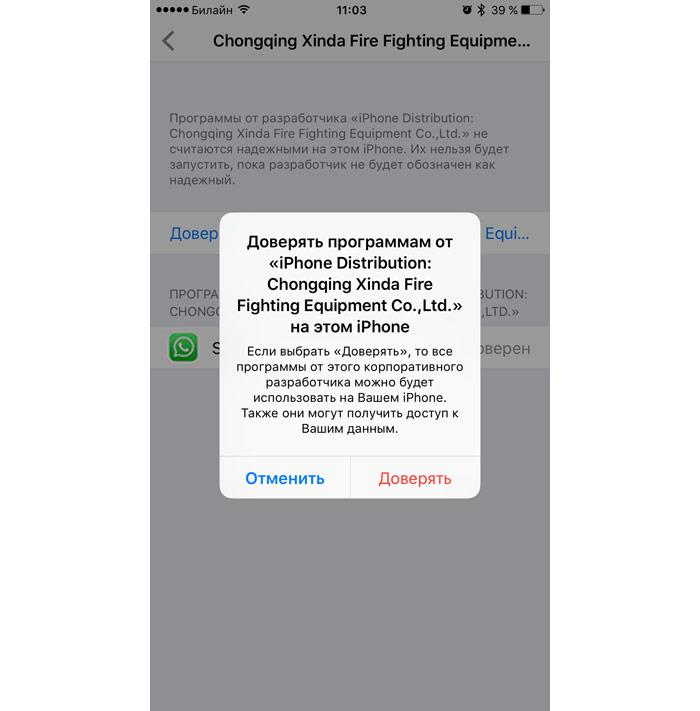 Два аккаунта WhatsApp, Telegram и Viber на одном iPhone - реальность - 5