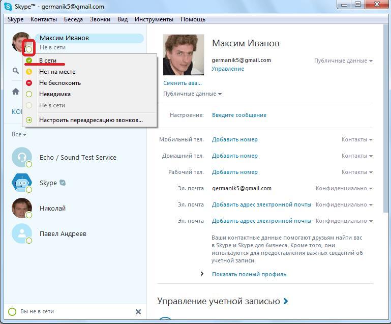 Изменение статуса в программе Skype