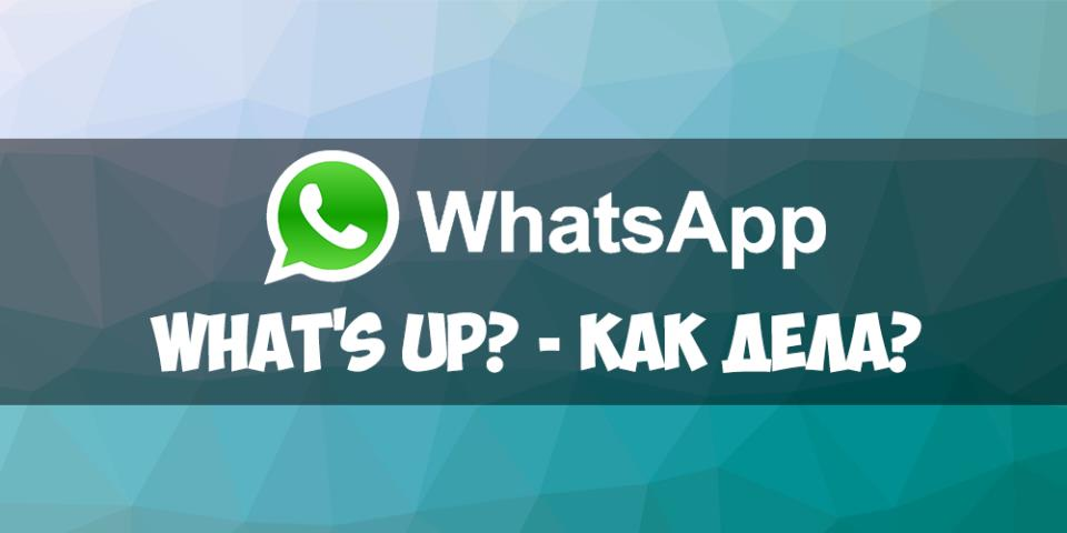 What's Up - как дела