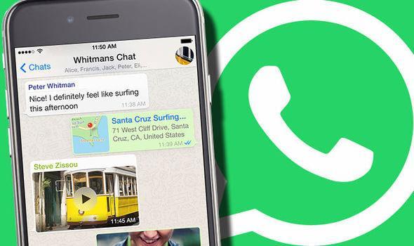 WhatsApp-GIF-3