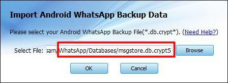 whatsapp backup extractor