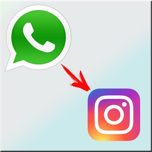 Как сделать ссылку на whatsapp 745