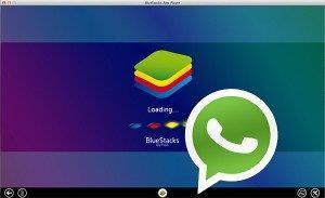 whatsapp для компьютера