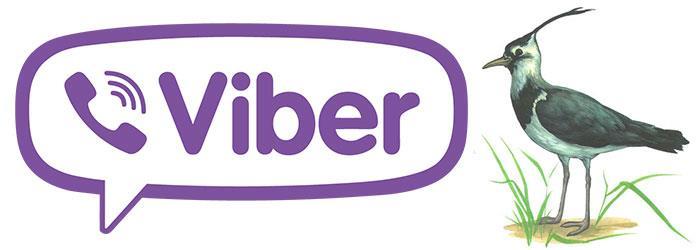viber-chbis