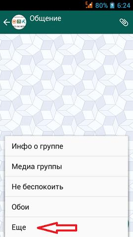 Меню чата WhatsApp
