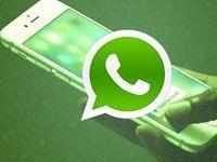 контакты в WhatsApp