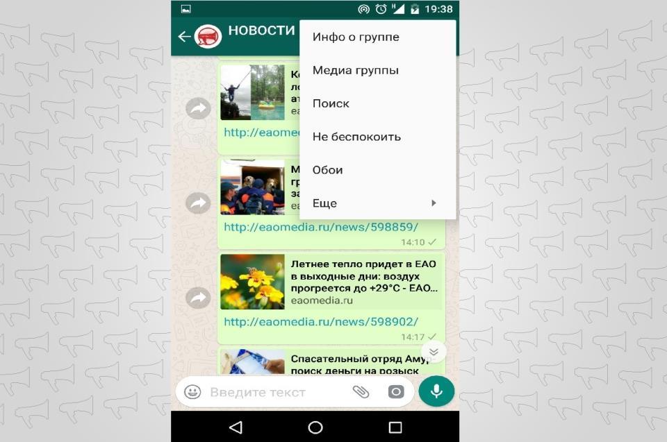 Скрины из WhatsApp
