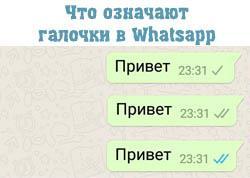 whatsapp галочки в сообщениях