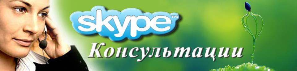скайп консультация онлайн
