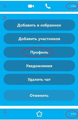 Удалить контакт из Скайпа на iPhone