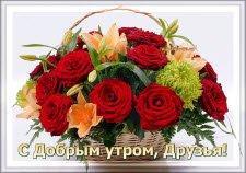 Желаю Друзьям доброе утро!