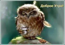 Утренний привет! Смотрите http://vip-otkrytki.ru/utrennij-privet/