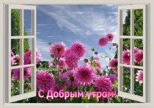 Откройте окна