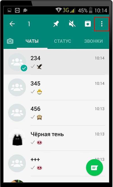 Выделение чата в WhatsApp