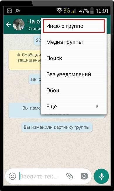 Информация об общем чате WhatsApp