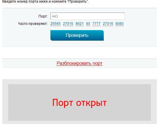 Проверка порта для Skype