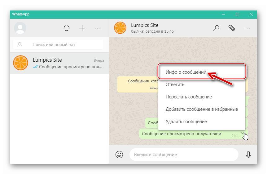 WhatsApp для Windows - подробные сведения о сообщении - пункт Инфо в меню