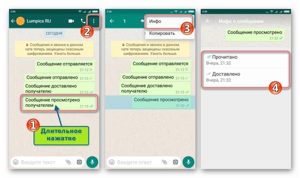 WhatsApp для Android получение подробных сведений о сообщении