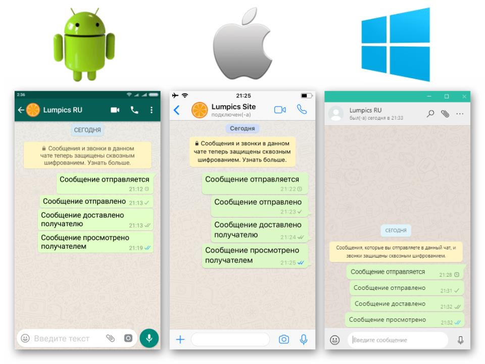 WhatsApp отображение статусов сообщений (галочек) в разных ОС
