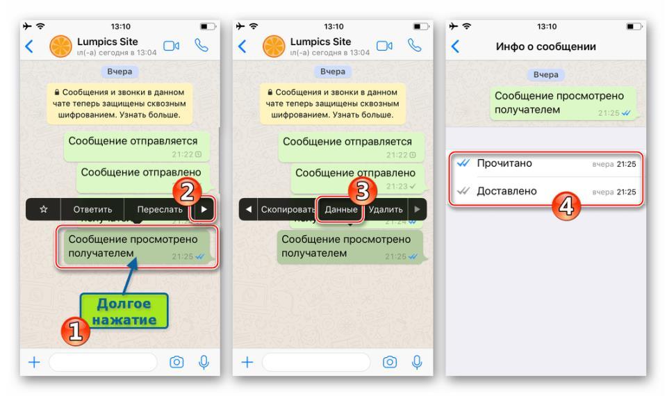 WhatsApp для iPhone вызов экрана со сведениями о сообщении через меню опций