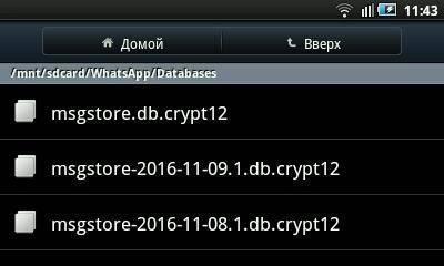 /sdcard/WhatsApp/Databases