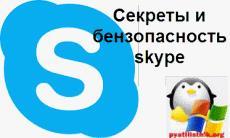Секреты и бензопасность skype