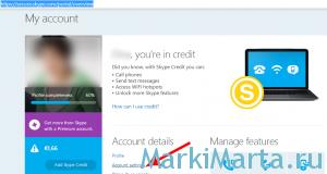 Страница учетной записи Skype