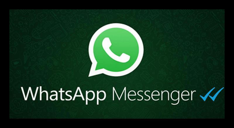 Что означают галочки в WhatsApp-3