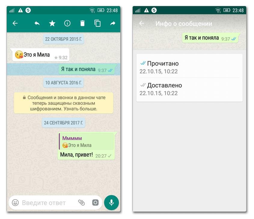 Что означают галочки в WhatsApp-2