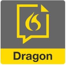 Dragon Anywhere Дракон