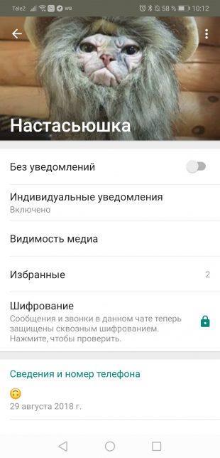 Советы пользователям WhatsApp: Выбор контакта