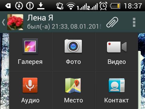 whatsapp фото