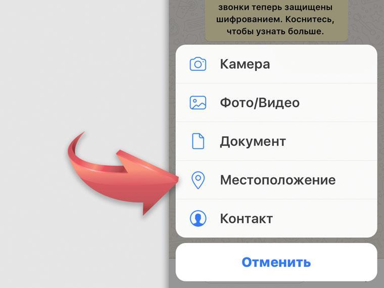 whatsapp-8