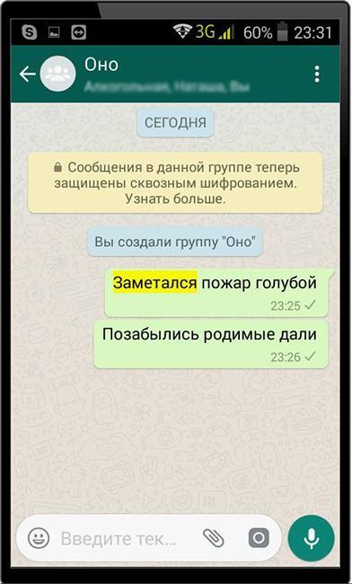 Результат поиска сообщения WhatsApp