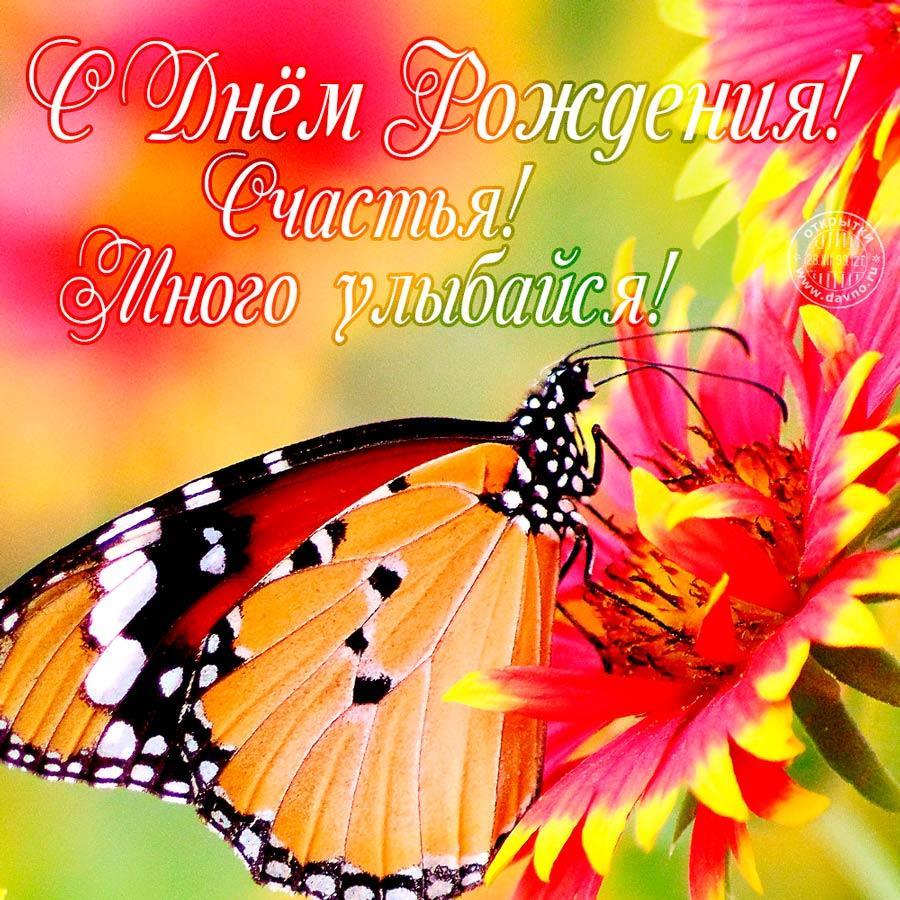 Яркая и позитивная открытка с бабочкой и красивой подписью поздравления