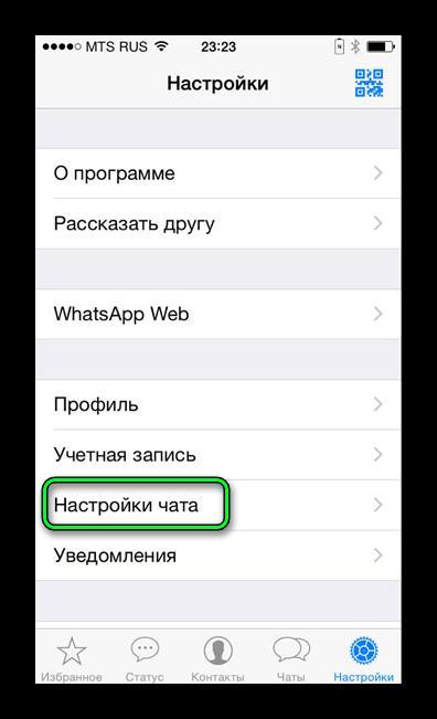 Настройки чата в WhatsApp iOS