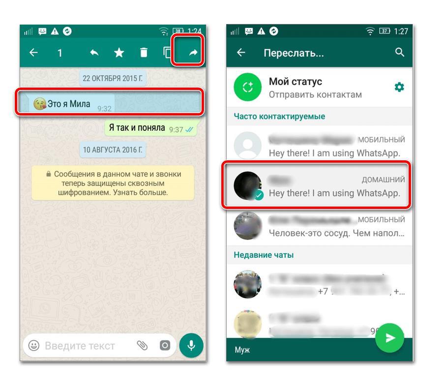 Как переслать сообщение в WhatsApp (2)