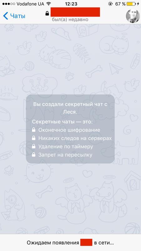 Как создать секретный чат в Телеграм - пример.