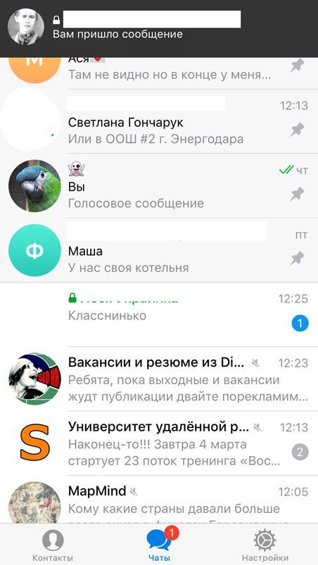 Как выделяется приватный чат Телеграм в списке чатов?