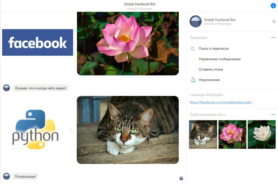Создание простого бота в Facebook на Ptyhon