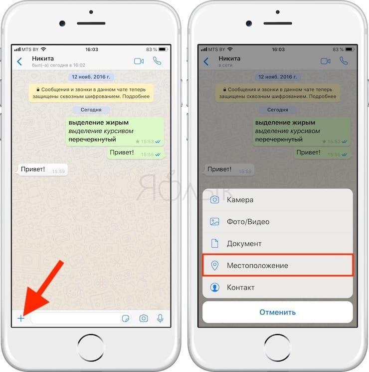Отправка координат местоположения в WhatsApp
