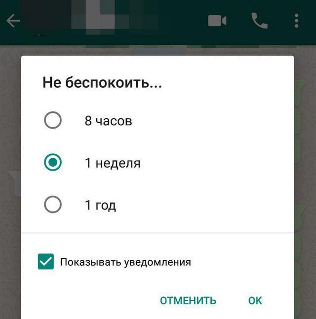 whatsapp-6.jpg